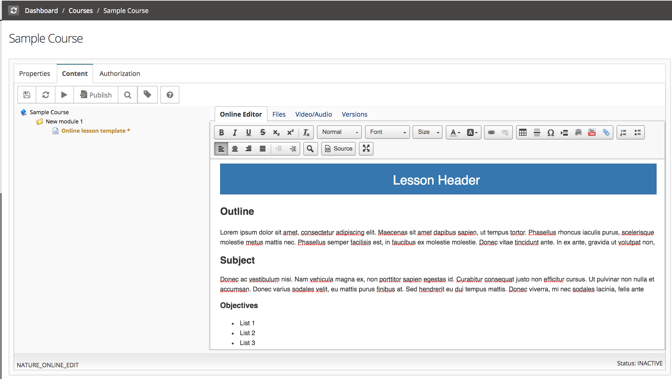 Content Template For Online Editor Type Lesson
